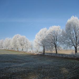 Začíná zima 2011 012.jpg