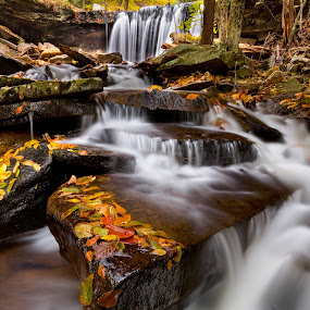Below Oneida Falls by Eric Gaston - Landscapes Waterscapes ( water, waterfalls, nature, autumn, state park, outdoors, pennsylvania, ricketts glen )