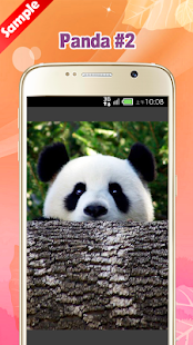 Panda Wallpaper screenshot