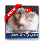 Hamsters Live Wallpaper