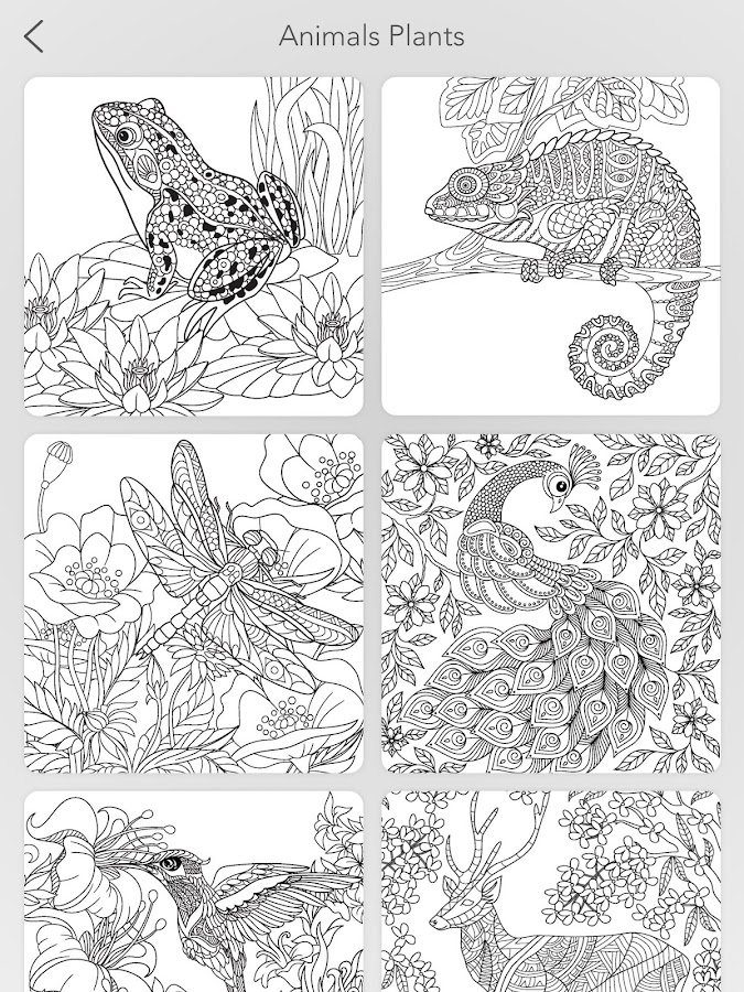 Garden Coloring Book Screenshot