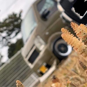 キャリイトラック  14y、63Tのカスタム事例画像 オンナ野郎(鈴木旧車倶楽部、ノブワークス徳島)さんの2020年03月02日00:10の投稿