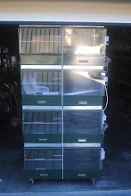 Photo: Frontal view of one nursery unit with 4 compartments for raising young galliforms during the first 3 weeks of life. The nursery unit is a battery system with 4 on top compartments.