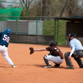 Baseball team by Vladimir Gergel - Sports & Fitness Baseball