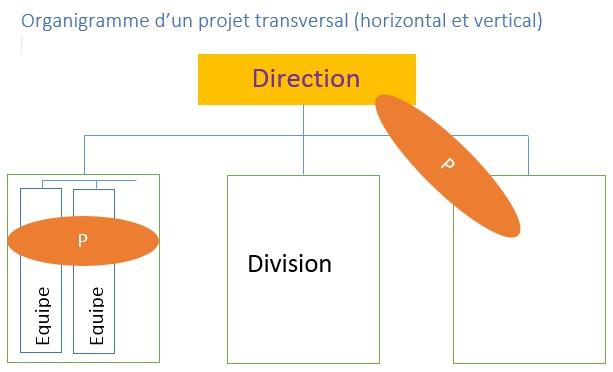 projet transversal.jpg