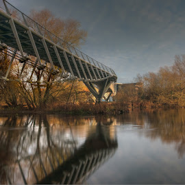 The Living Bridge by John Holmes - Buildings & Architecture Bridges & Suspended Structures ( winter, blue, living bridge, trees, reflections, brown, long exposure, univesity of limerick, winter bridge, river shannon )