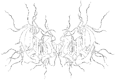 la destileria sonora coldworld discografia discography 1970 Chevrolet Chevelle SS g neros atmospheric black metal depressive black metal dark ambient informaci n coldworld es un proyecto en solitario del m sico alem n ge b rner