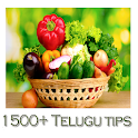 1500+ Telugu Tips