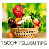 1500+ Telugu Tips