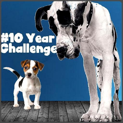 10 Years Challenge #10YearChallenge 2009-2019