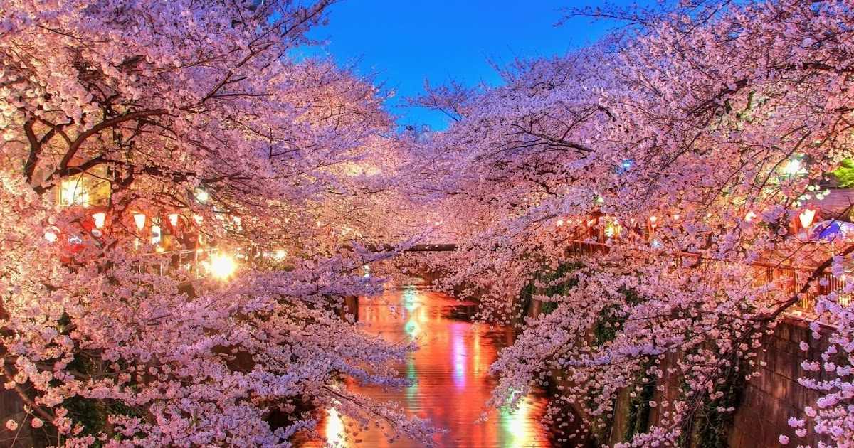 7 Incredibly Romantic Date Locations In Seoul