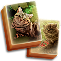 Hidden Mahjong - Cats Tropical Island Vacation icon