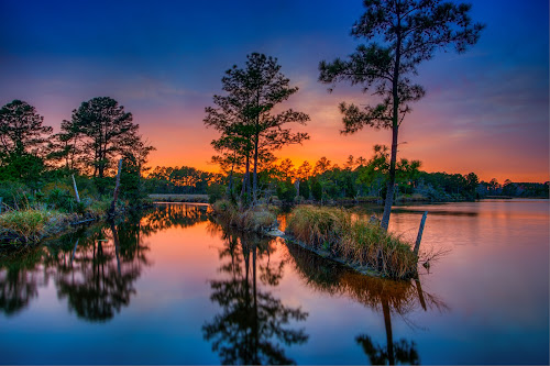Pungo River Sunset by Robert Mullen - Landscapes Sunsets & Sunrises ( belhaven, sunset, sundown, bath, reflections, trees, waterscapes, pungo river, river,  )