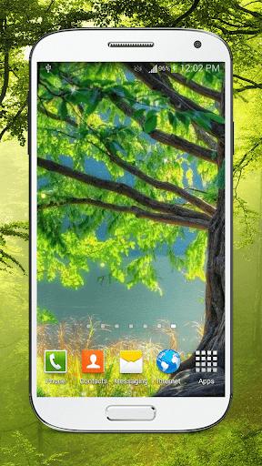 森林动态壁纸HD