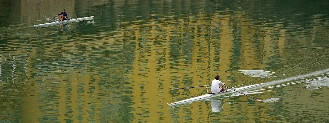 Vogando... in direzione opposta! di Francesca Malavasi