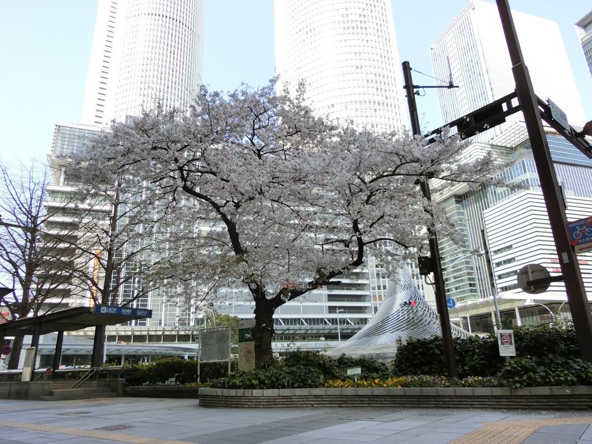JRセントラルタワーズとモニュメント飛翔と桜
