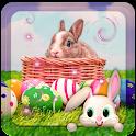4k Live Bunny Wallpaper HD icon