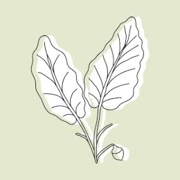 Green Leaves - Etsy Shop Icon item