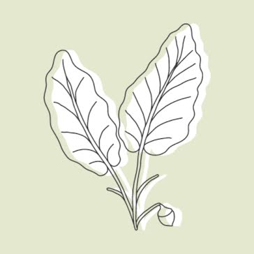 Green Leaves - Etsy Shop Icon template