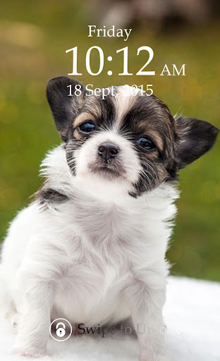 Cute Puppy Keypad Screen Lock