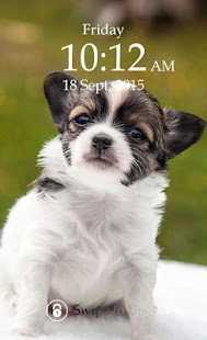 Cute Puppy Keypad Screen Lock screenshot