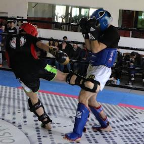 Low Kick by João Pedro Ferreira Simões - Sports & Fitness Boxing ( red, blue, fight, amateur, low kick, kickboxing )