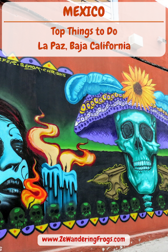 Things to Do in La Paz Mexico // Street Art