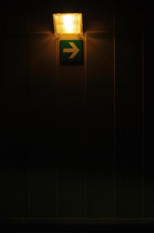La luce. La via. di PaoloPalazzi