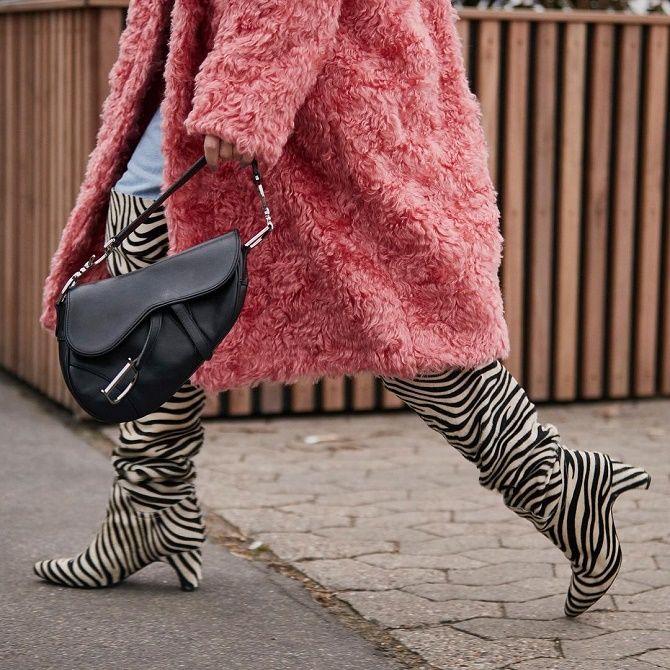 Zebra print 14