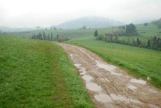 Photo: szlak niezbyt przyjemny, ale łatwy do wędrowania