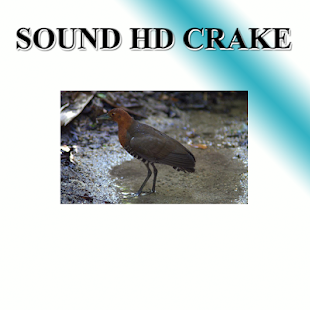 Monkfish sounds to birds. - náhled