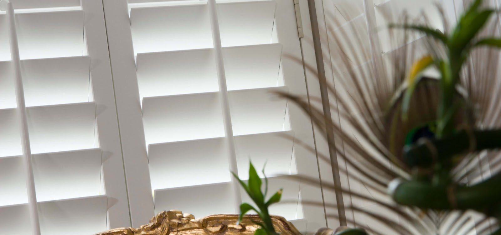 Interior Shutters In London