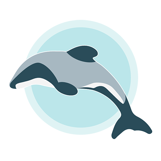 Hector's Dolphin Sightings