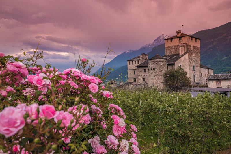Pennellate di colore per un castello di Eli2019