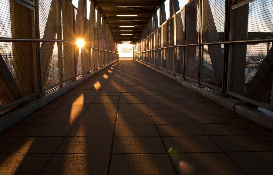 by Dennis Sorita - Buildings & Architecture Bridges & Suspended Structures