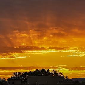 Recent Sunrise by Fred Prince - Landscapes Sunsets & Sunrises ( sunrise, east patio, summer sunrise, albuquerque, new mexico )