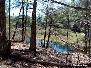 Photo: Upper Andromeda Pond