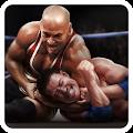 Real Wrestling 3D download