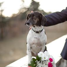 Wedding photographer Dmitriy Luckov (DimLu). Photo of 10.01.2017