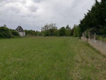 terrain à Naintre (86)