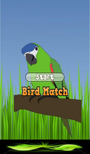 Bird Matching Game