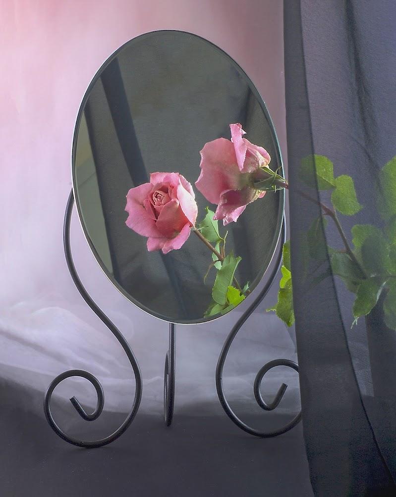 Specchio, specchio delle mie brame, dimmi chi è la più bella del reame? di Marlak