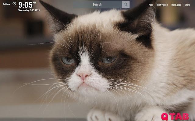 Grumpy Cat New Tab Wallpapers