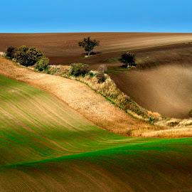 Waves in landscape by Petr Homola - Landscapes Travel