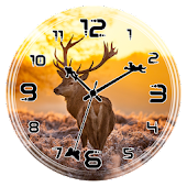 Deer Clock Live Wallpaper
