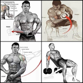 Bodybuilding muscle training tutorial