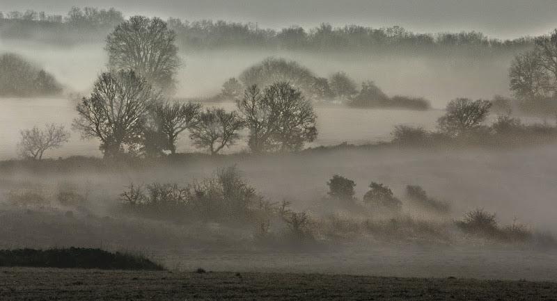 La nebbia della Murgia di Pinco_Pallino