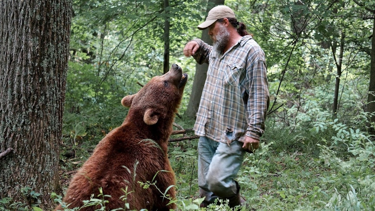 Watch Project Grizzly live
