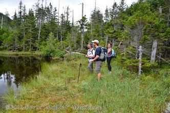 Photo: Wetlands in Elk Pass.