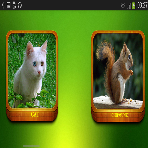 동물 소리|玩娛樂App免費|玩APPs